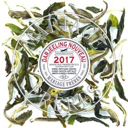 AMBOOTIA - FTGFOP1 DJ1/2017 Darjeeling Organique First Flush