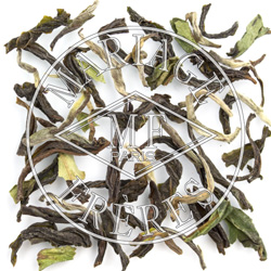 JUNGPANA UPPER - FTGFOP1 DJ20/2016 Darjeeling Organique First Flush