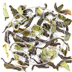 RISHEEHAT - SFTGFOP1 DJ32/2016 Darjeeling Organique First Flush