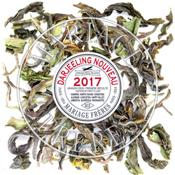 ORANGE VALLEY - FTGFOP1 - Jardin Premier Darjeeling First Flush