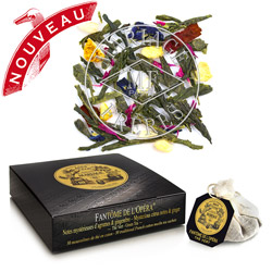 FANTÔME DE L'OPÉRA® - Mysterious citrus green tea - Jardin Premier* with ginger