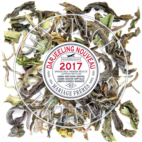T109 - ORANGE VALLEY FTGFOP1 - Jardin Premier*