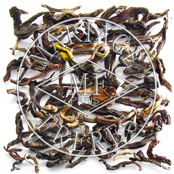 T119 - TEESTA VALLEY  DJ392/2016