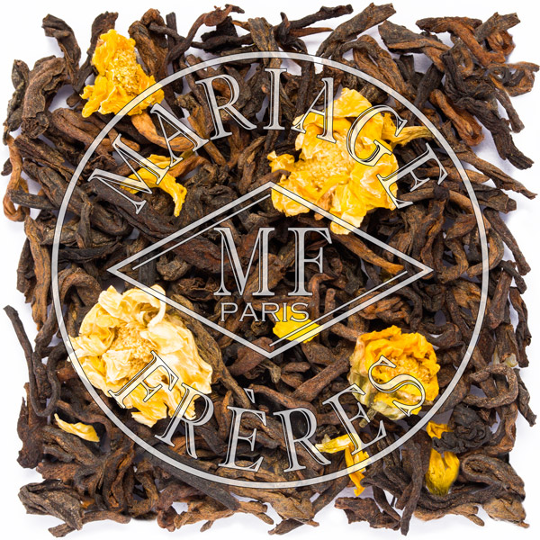 T2022 - PU -ERH D'OUTRE-MER Matured tea
