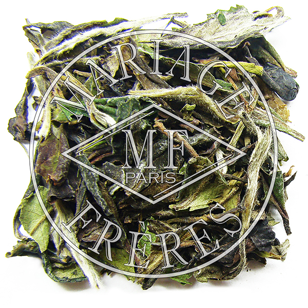 T7257 - A LA PORTE CHINOISE® White, black, green & Blue tea™  blend