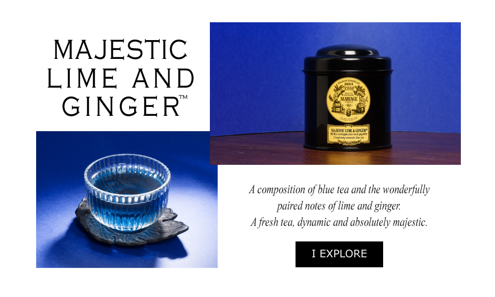 MAJESTIC LIME & GINGER™ - A composition of blue tea and the wonderfully paired notes of lime and ginger.