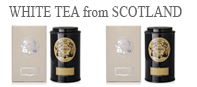Scottish Highlands white teas :  a smoky tea from Scotland and a Scottish white tea