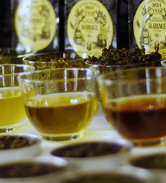 Tea Club : course about tea and tea tasting in Paris