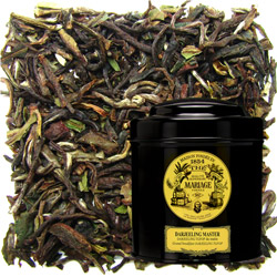 Darjeeling Master in Icône black canister : blend of Darjeeling black tea