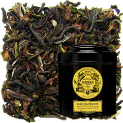 Darjeeling Princeton in Icône black canister : blend of black tea Darjeeling First Flush