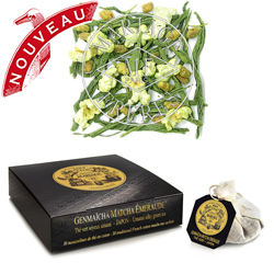 Genmaicha Matcha Emeraude tea bags : Japanese organic green tea with toasted rice